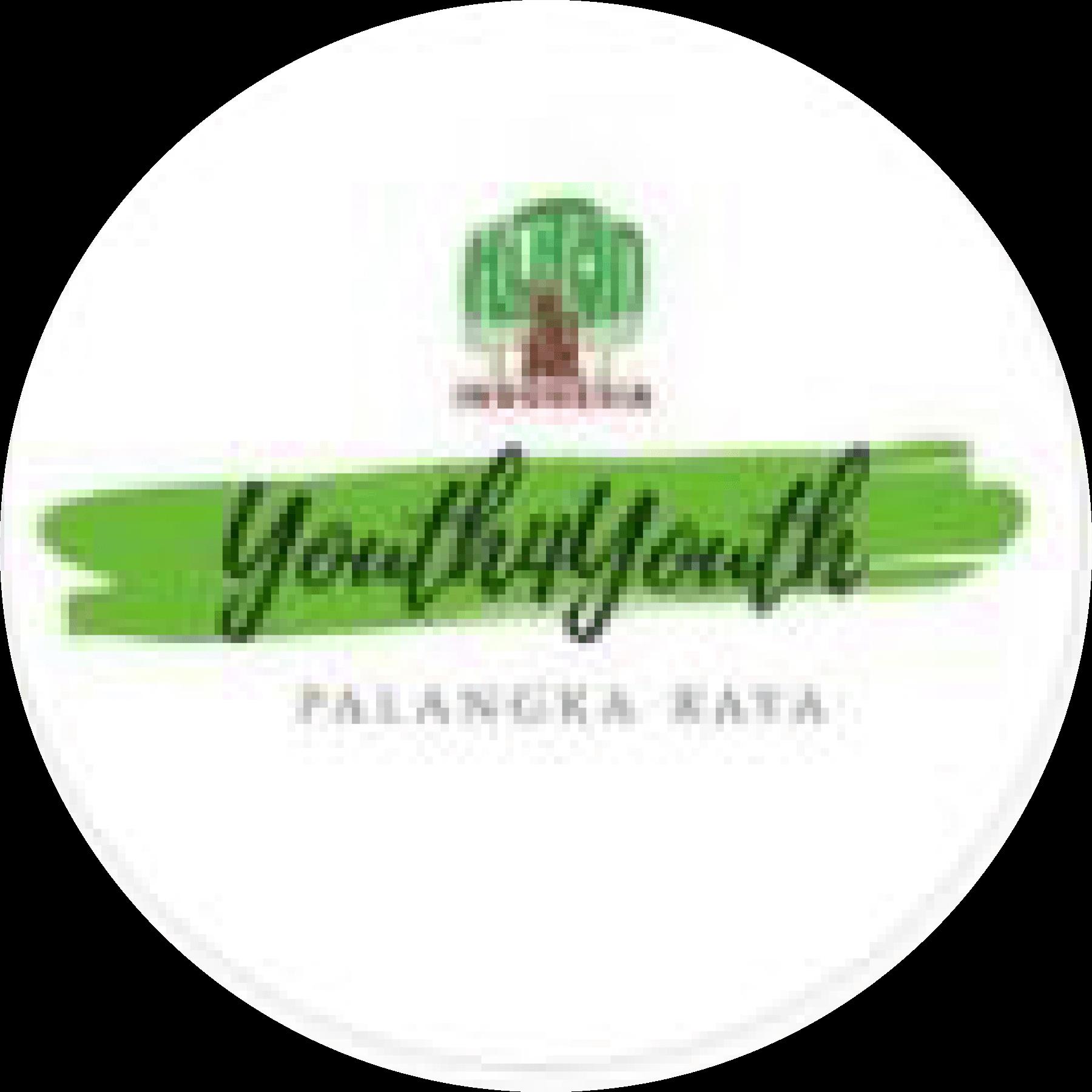 Youth4youth palangkaraya